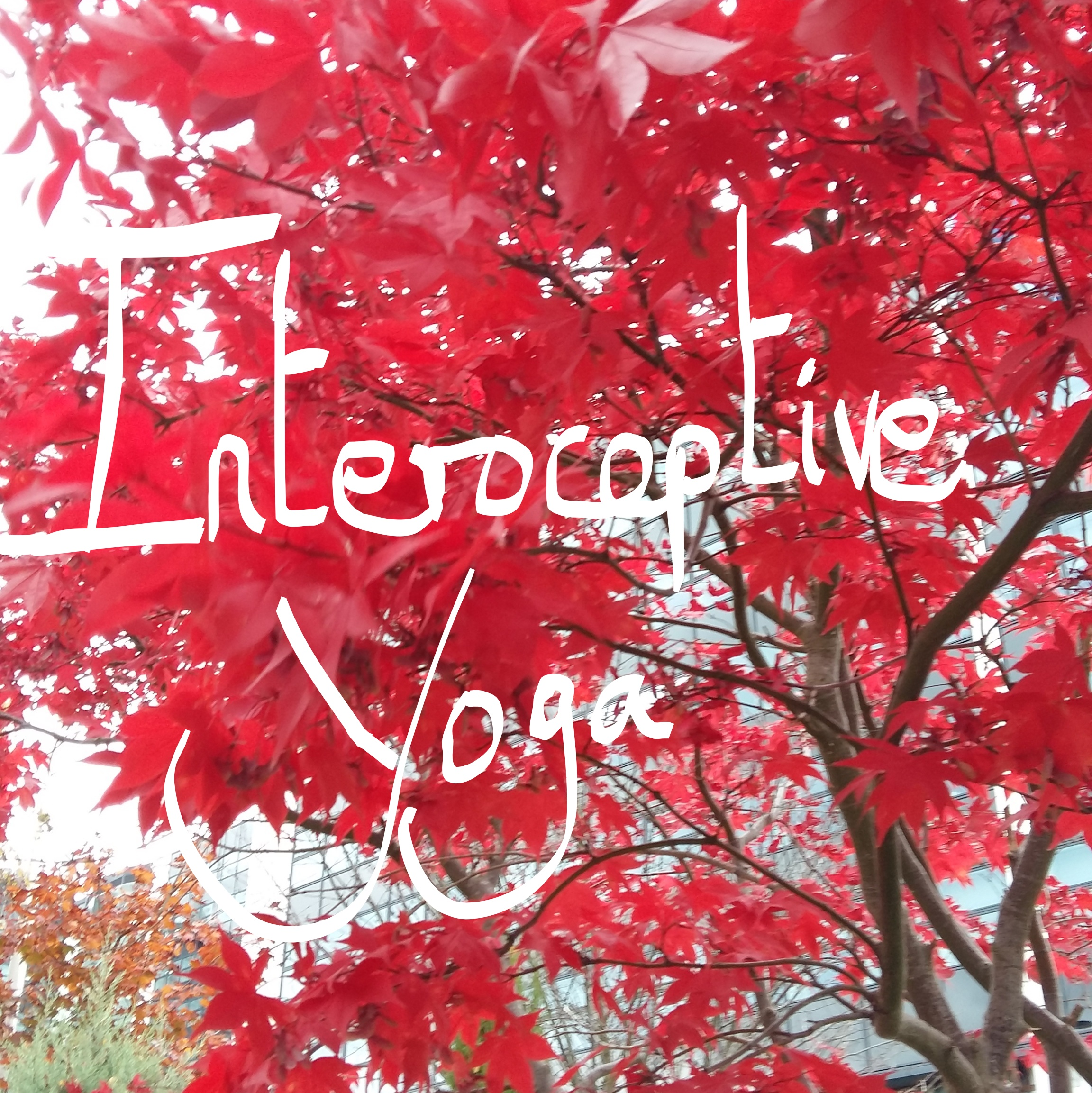 Interoceptive Yoga Workshop, Derby